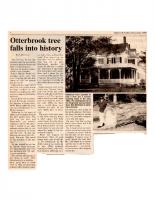 Otterbrook Tree Falls into History