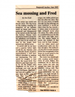 Sea Mossing and Fred